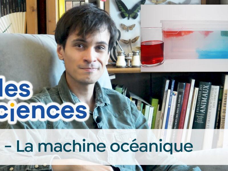 Billes de sciences #35 | La machine océanique